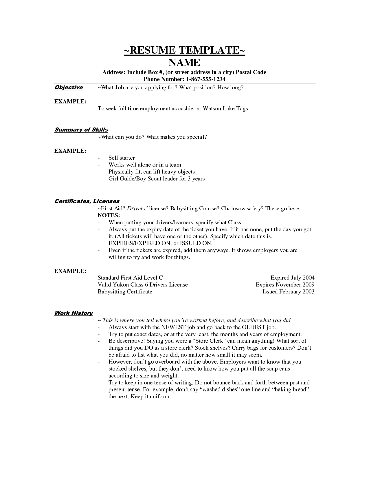 customer services cashier resume objectives