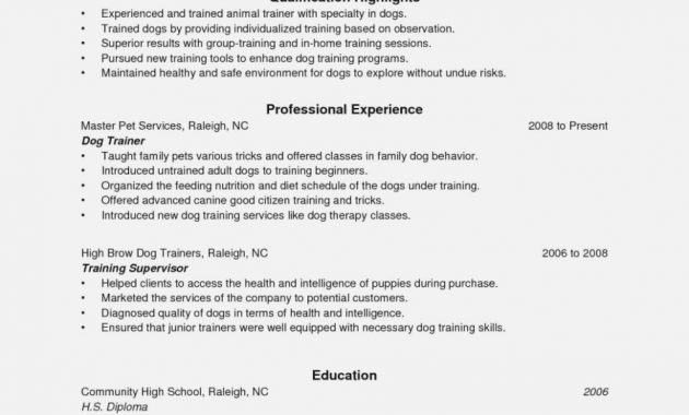 Dog Trainer Resume Objectives Mt Home Arts